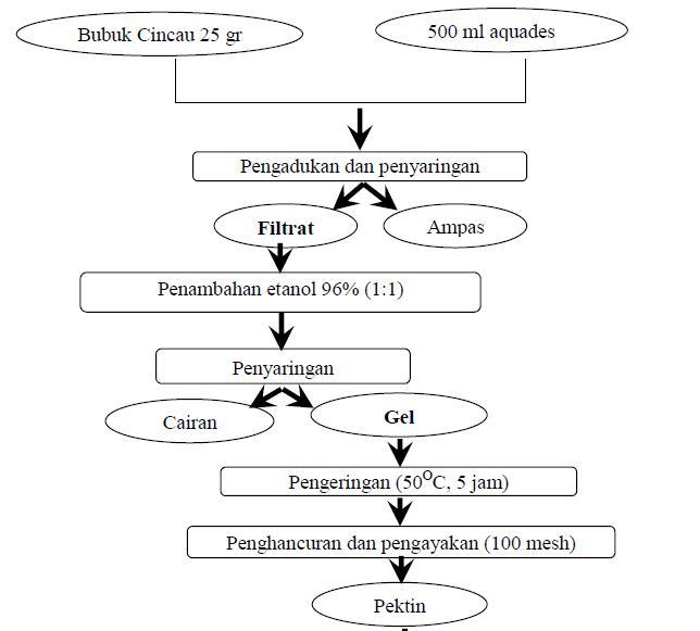 Khamir yeast spesies baru yeast yang bisa nulis page 5 diagram alir ekstraksi pektin ccuart Gallery