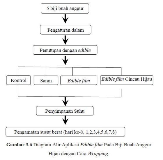 Khamir yeast spesies baru yeast yang bisa nulis page 5 diagram alir aplikasi edible film pada biji buah anggur hijau dengan cara wrapping ccuart Gallery